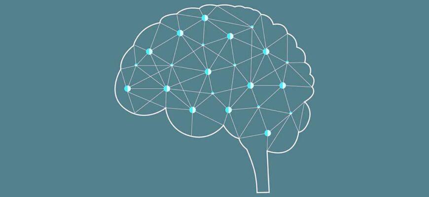 производительность мозга