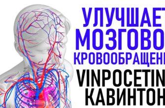 Кавинтон (Винпоцетин) инструкция цена аналоги