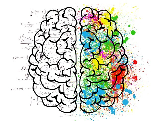 мозг познание