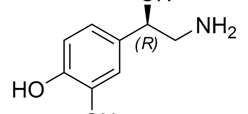 Норадреналин гормон